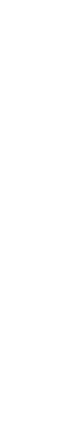 AMBER - BROWN - BITTER
