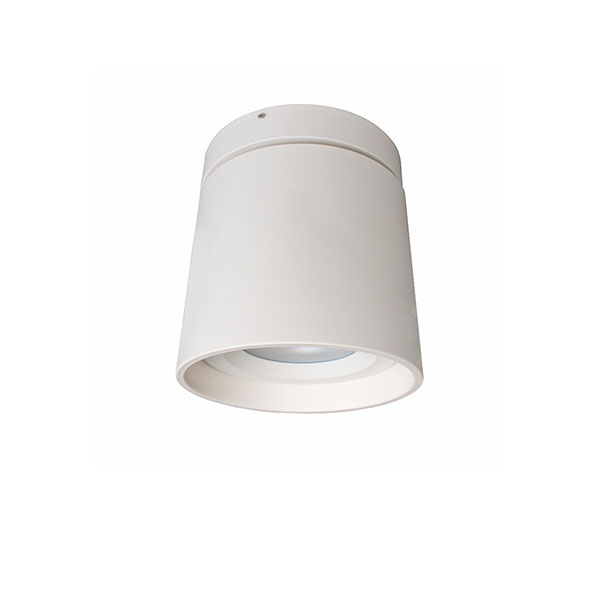 YUKI Surface Mounted Light, 25W