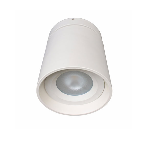 YUKI Surface Mounted Light, 40W