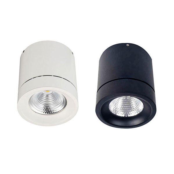 YUMI Surface Mounted Light, 30W