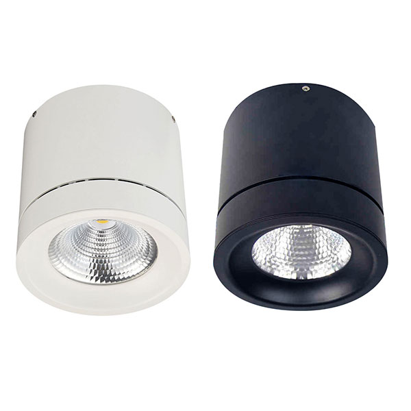 YUMI Surface Mounted Light, 40W