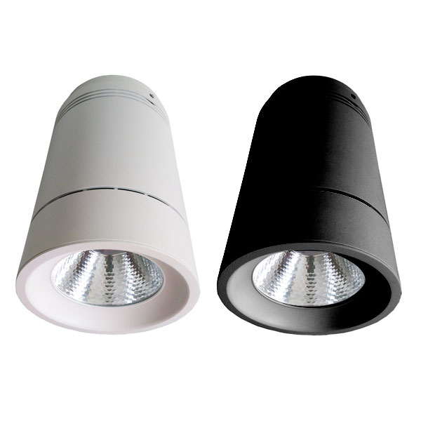 YUMI Surface Mounted Light, 60W