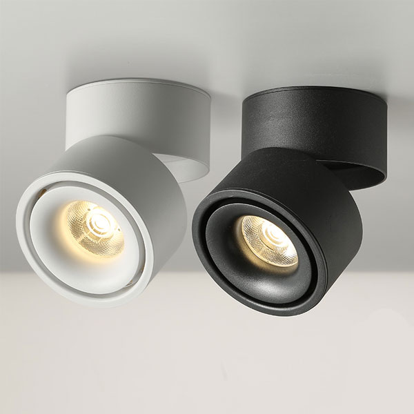 Adjustable Surface Mounted Light, 12W