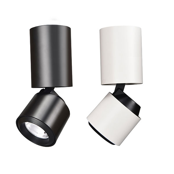 Adjustable Surface Mounted Light, 20W