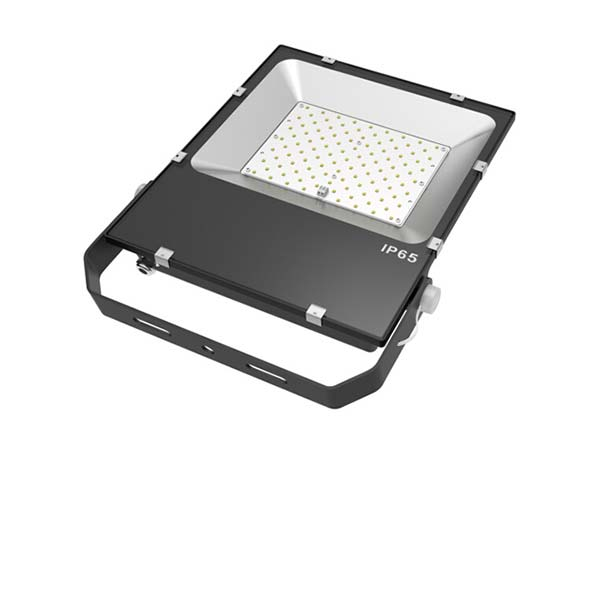 TAM Series Flood Light, 100W