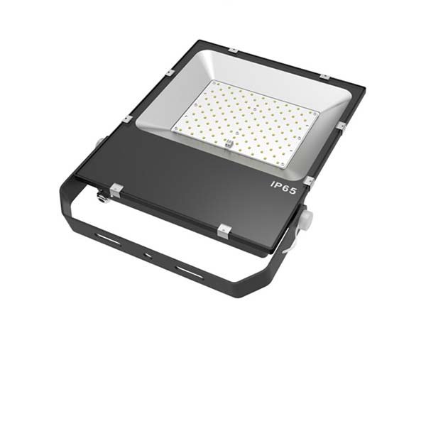 TAM Series Flood Light, 80W