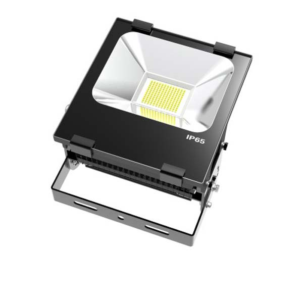TIM Series Flood Light, 100W