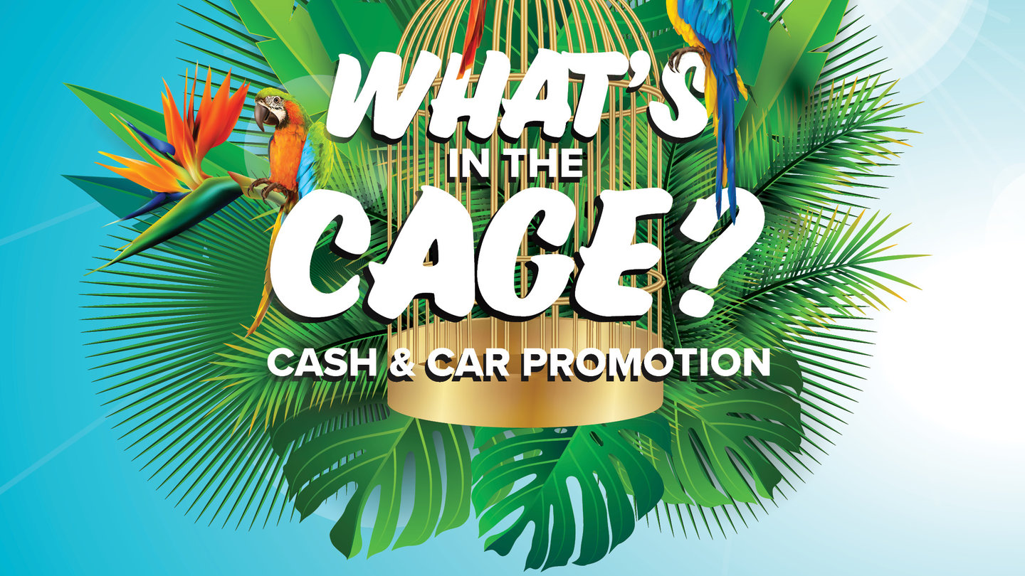What's in the Cage? Car and Cash Promotion