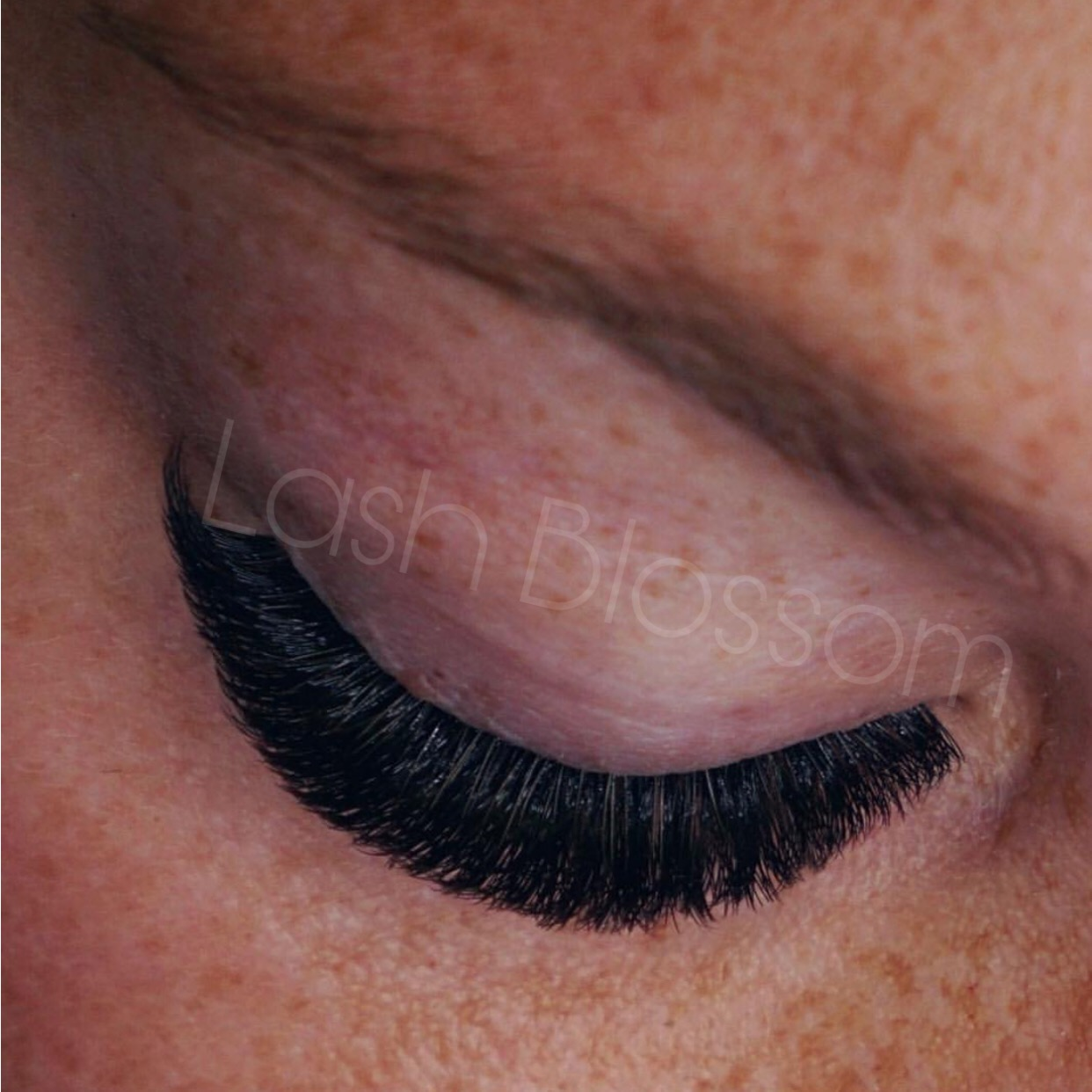 Eyelash Extensions Sydney Best Mink Silk Lash Extension