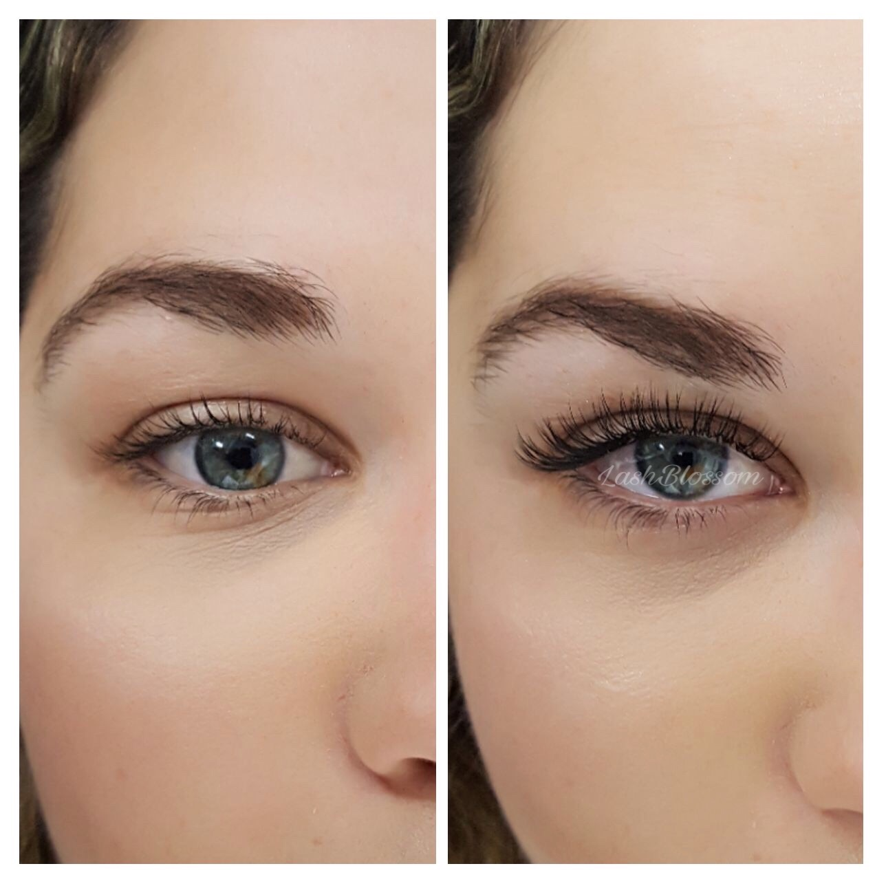 27c81d7b968 Elegant Fake Eyelashes | Temporary Eyelash Extensions | Lash Blossom ...