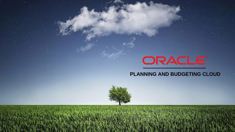News | Oracle PBCS Success
