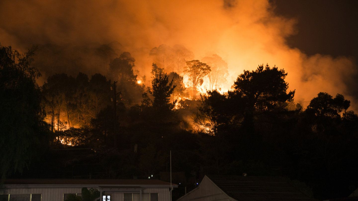 Catastrophic fire conditions have been announced through NSW today and many of Peter Vickers Business Group clients have been affected and even evacuated already. We want to extend our support to all our clients; here is how to protect your property and some useful links to help you stay safe.