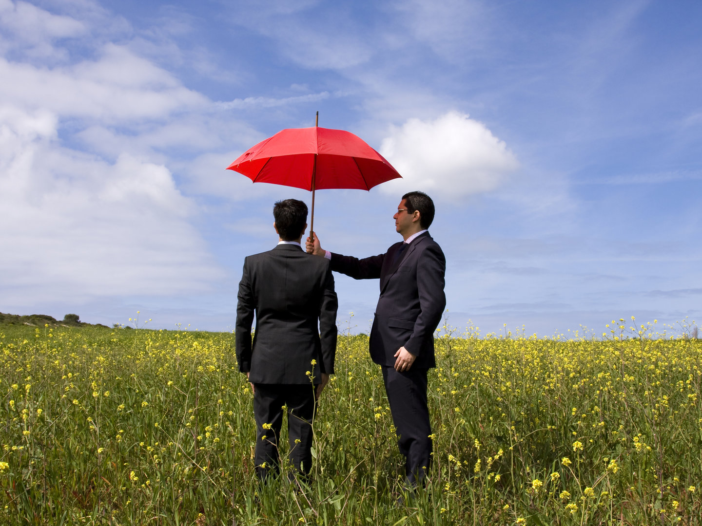 At Peter Vickers Insurance Brokers Lindfield, we partner with small to medium businesses and tailor insurance to their specific needs and budgets. See our Insurance Newsletter for the HOT topics related to Insurance.