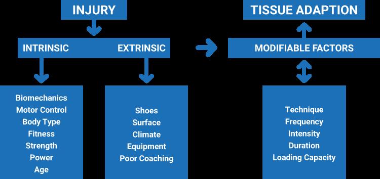Intrinsic Extrinsic Diagram