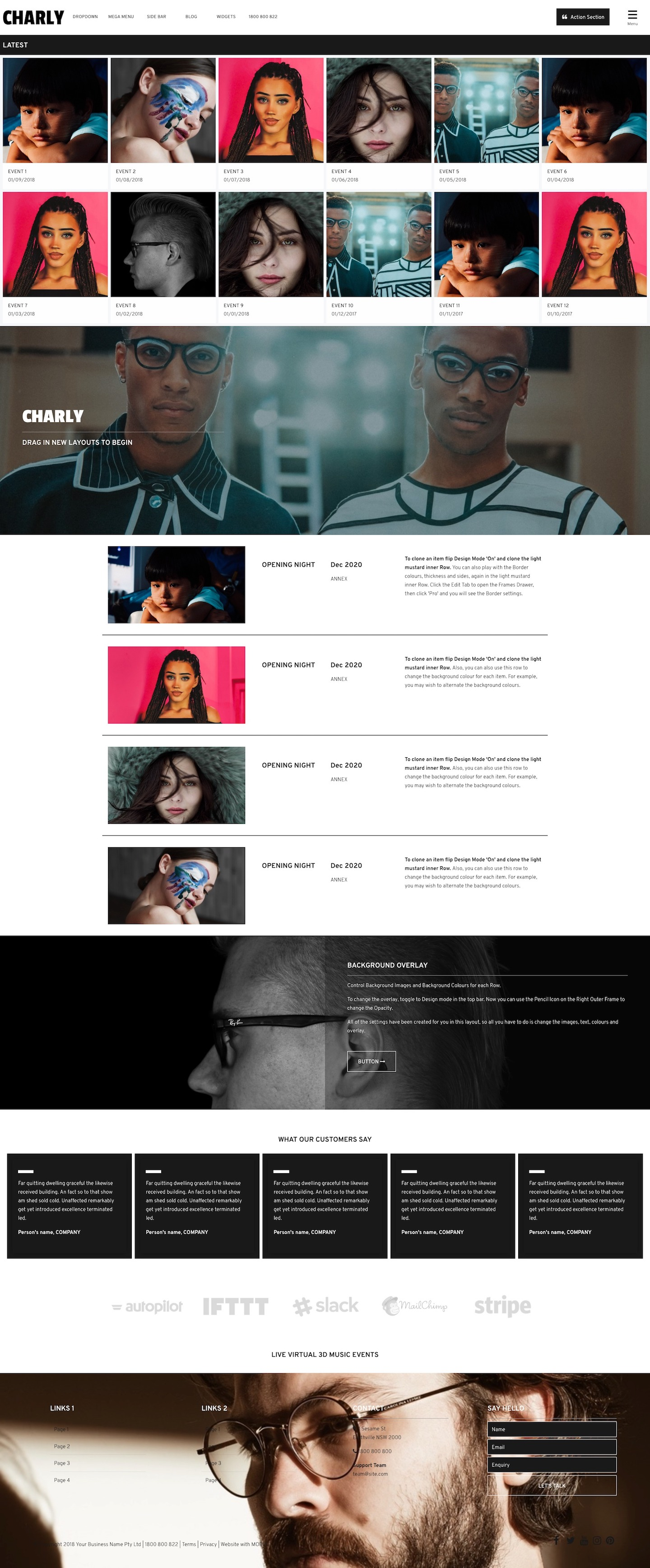 Charly Website Design