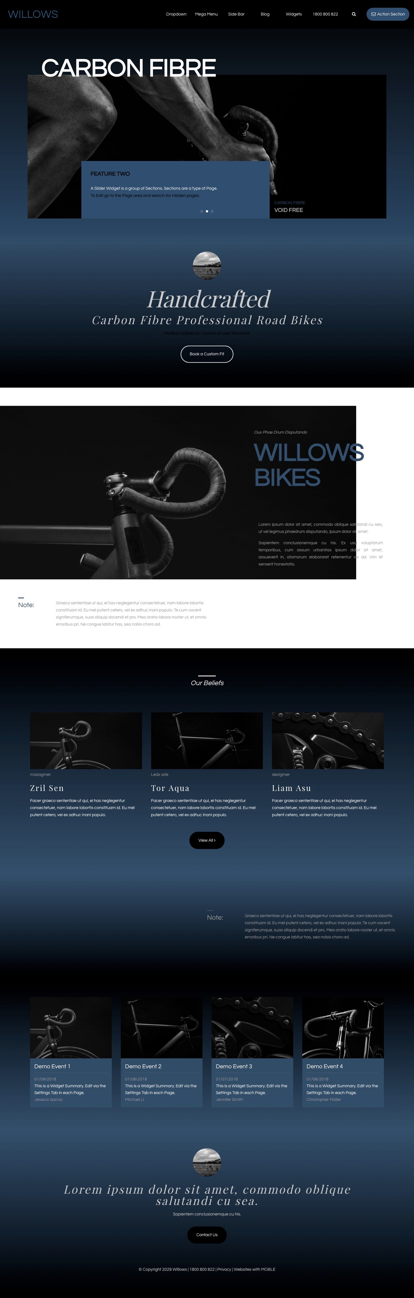 Willows Website Design